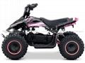 Electric Quad (ATV-6E)