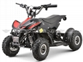 Electric ATV (ATV-1E)