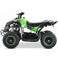 Electric ATV (ATV-3EA)
