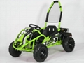 1000W Electric Go Kart (GK008E)