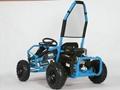 98cc Go Kart EPA & CARB approved (GK008)