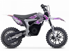500W Electric Dirt Bike