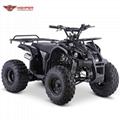 ATV 110cc, 125cc (ATV006)