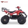 Shaft Drive Electric ATV Quad (ATV008E)