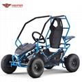 Kids Electric Go Kart Buggy 1000W (GK004E)