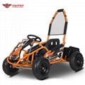 Mini Electric Go Kart 1000W (GK008E)