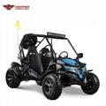 Adult Go Kart Buggy 150cc CVT (GK012)