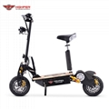 """1000W,1600W,2000W Electric Scooter 12"""" On Road Wheels (HP107E-C)"""