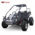 Adut Buggy 300cc CVT (GK006GT)