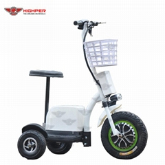 500W48V Electric 3 Wheel Scooter (HP105E-C)