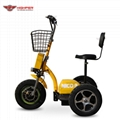500W48V Electric 3 Wheel Scooter (HP105E-D)