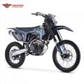 Full Size Dirt Bike (DBK13 NC300)