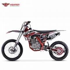 Full Size Dirt Bike (DBK13 CBS300)