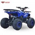 ATV 110cc, 125cc (ATV007)