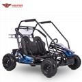 Electric Go Kart Cross Buggy (GK014E)
