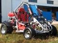 Go Kart 250cc (GK006)