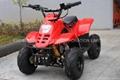ATV 50cc, 70cc (ATV001)