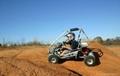 Go Kart 5.5HP (GK001B)