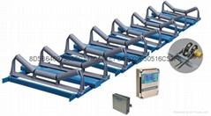 赛摩阵列式ZL高精度电子皮带秤