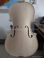 White violin 2