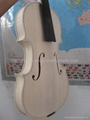 White violin 4