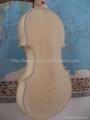 White violin 5