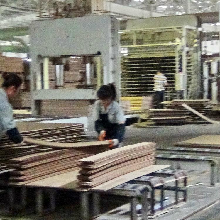 竹木或木木單板層壓復合板生產設備 4