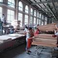 竹木或木木單板層壓復合板生產設備 2