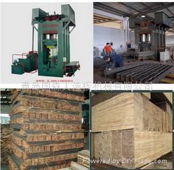 重組竹集成材壓機生產設備 4