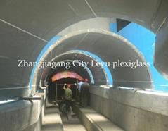 Acrylic Tunnel