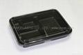 Disposable plastic Bento Boxes