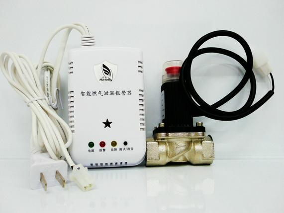 名安家用燃气泄漏报警器联动4分管道电磁阀 1