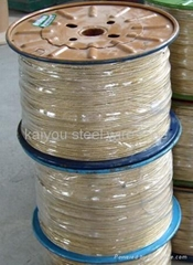 Copper Coated Steel Wire Rope