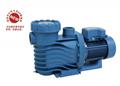 供应AQUA爱克 AK系列专业温泉泳池循环水泵 1