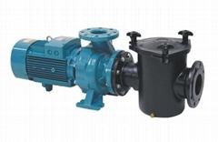 供应ESPA亚士霸专业泳池铸铁水泵