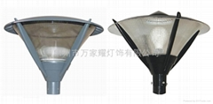 Induction Lamps - Garden Lights-TY80