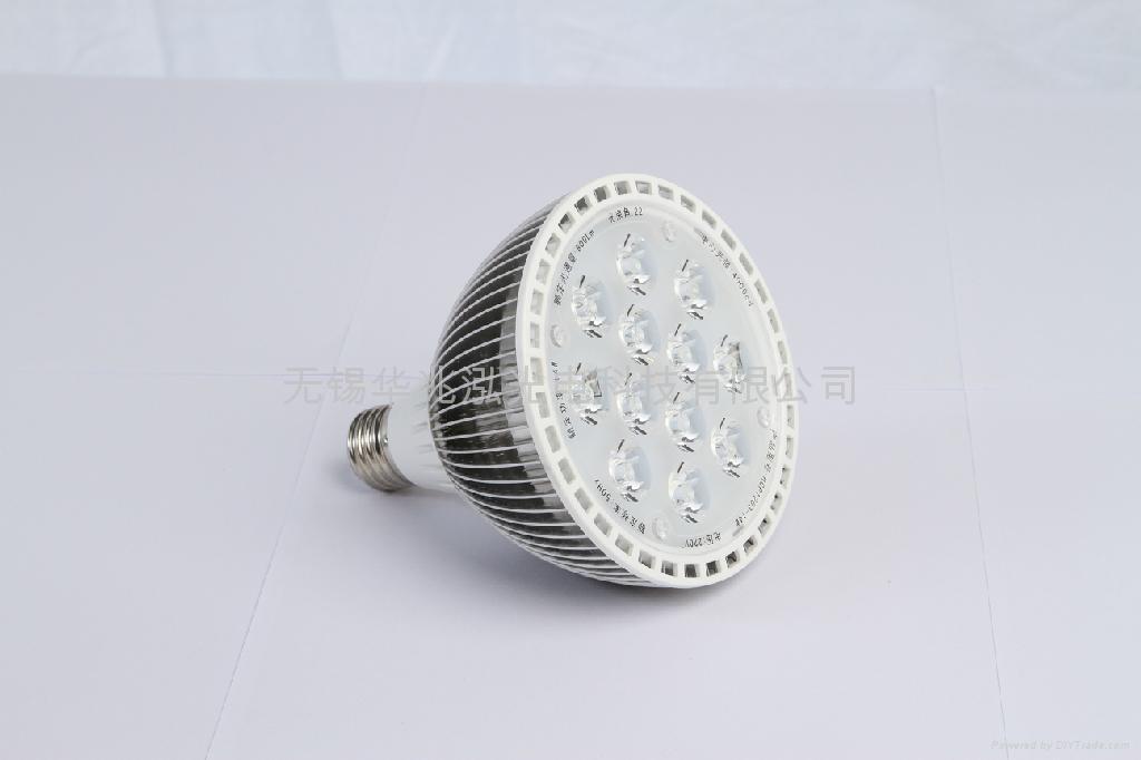 LED PAR38 射灯 1