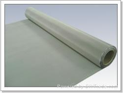 stainlesss steel wire mesh  1