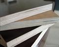 Quality  Plywood