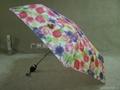 供應雨傘 4