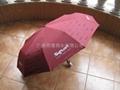 浮水印雨伞