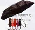 三折雨傘 3