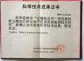 突尼斯軟籽石榴樹苗 4