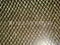 gold metallic mesh fabric  2