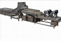 Cleaning vegetables processing line