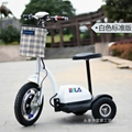 fashion electric Tricycle 2