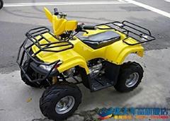 ATV-110CC 沙滩车