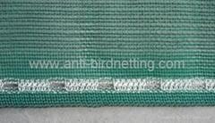 scaffold nets
