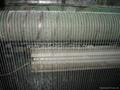 bee netting