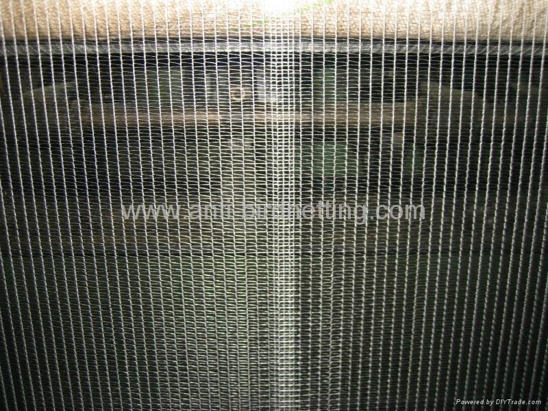 bee nets 4